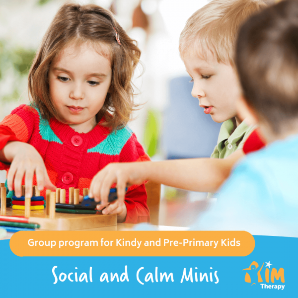 Social & Calm Minis Group Website Cover Image
