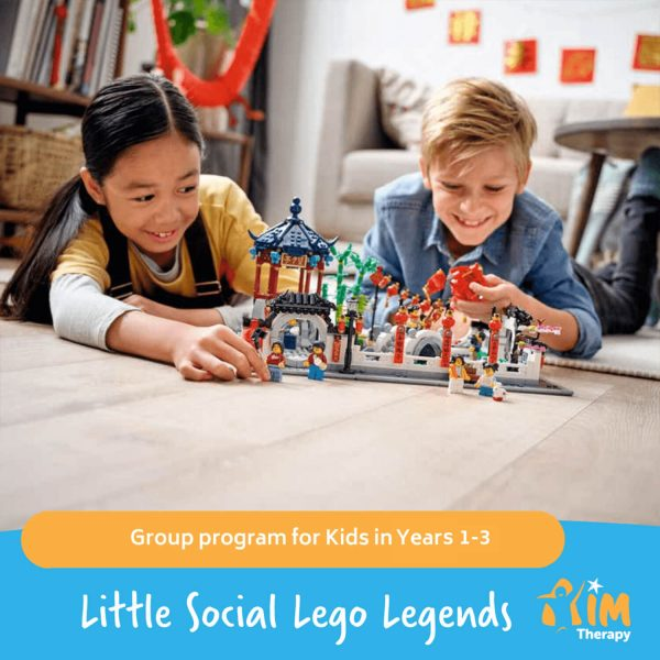 Little Social Lego Legends AIM Therapy for Children